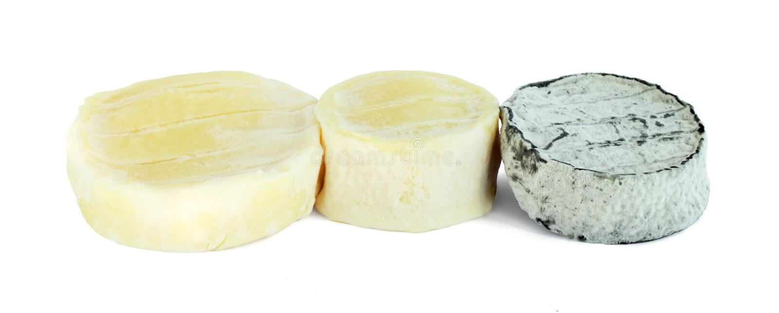 Soft goat cheese royalty free stock photos