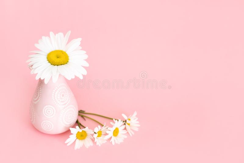 Soft pink light bathroom decor for advertising, design, cover. Beautiful flowers in a vase on a pink wall background.  stock images