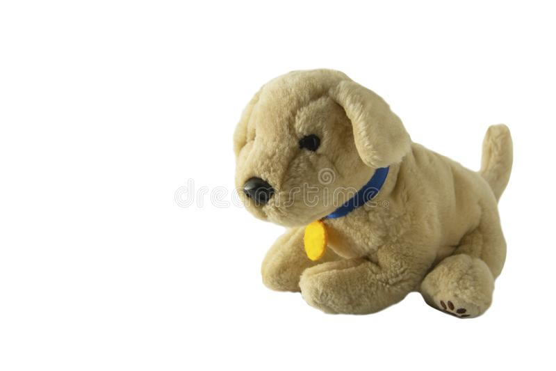 Soft plush dog toy. Ivory, brown pupy toy, isolated. On white kids children puppy play games love vintage face animal fluffy small fun gift wool beige doggy fur royalty free stock photos