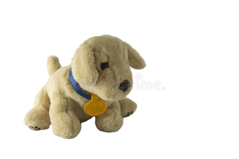 Soft plush dog toy. Ivory, brown pupy toy, isolated. On white kids children puppy play games love vintage face animal fluffy small fun gift wool beige doggy fur royalty free stock photo