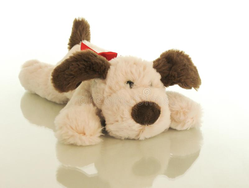 A cute puppy is sprawled on his belly, he is happy that he was presented to the kid for his birthday. The soft, radiating kindness plush puppy. Holidays his royalty free stock images