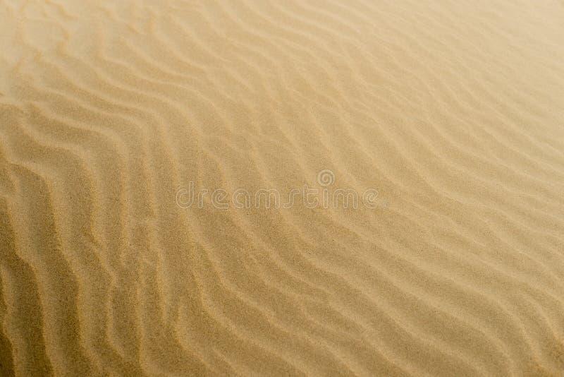 Soft Sand Textured Bac...