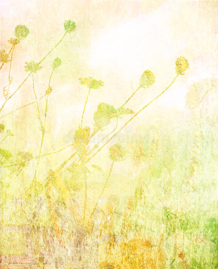 Soft summer meadow textured background stock photos