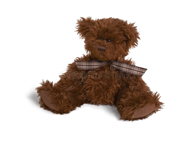 Download Soft teddy bear stock photo. Image of color, concept - 11522474