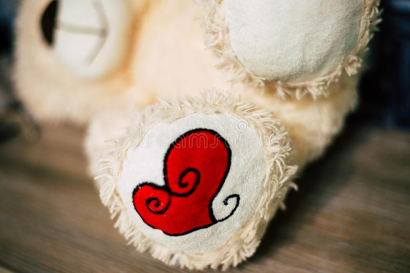 Soft toy `bear` stock photo