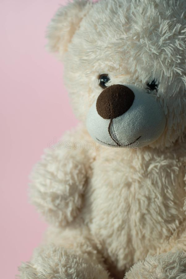Soft toy `bear` royalty free stock image