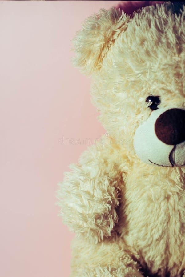 Soft toy `bear` royalty free stock photos