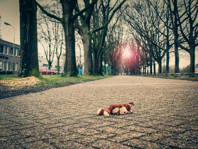 Soft toy dog, lie on the road. The concept of child safety on the street, or animal protection. Soft toy dog lies on the road close-up view, view royalty free stock photos