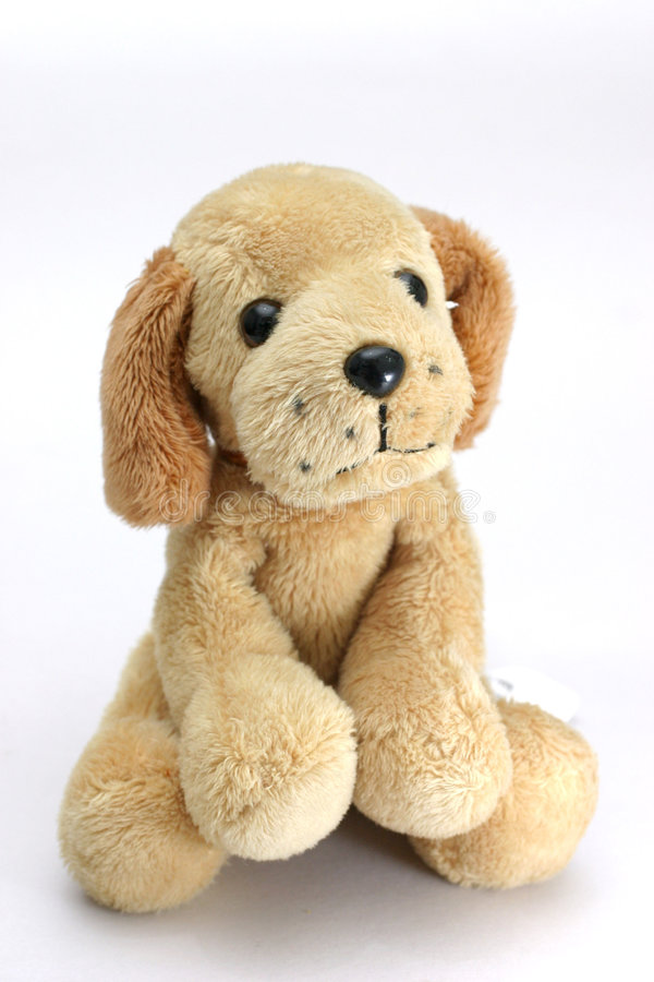 Soft-toy dog stock photo. Image of puppy, kids, soft, cute