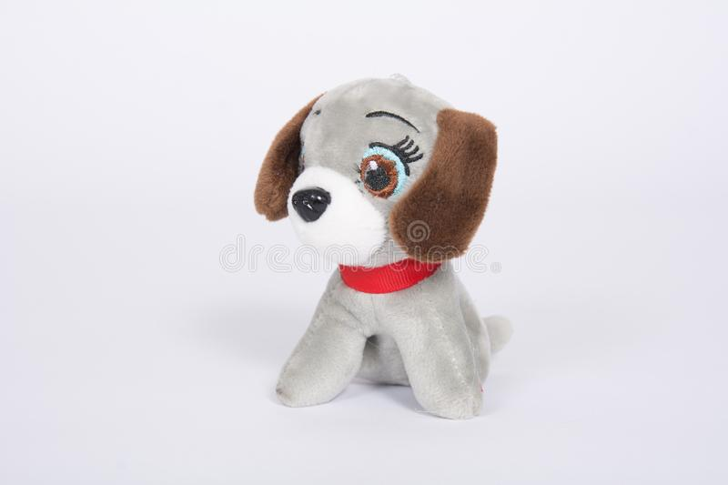 Soft toy dog with brown ears on a white background.  stock photos
