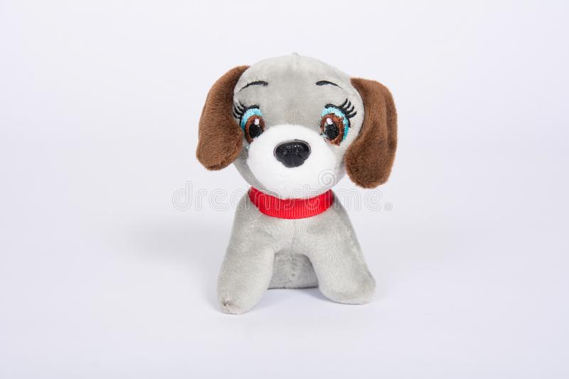 Soft toy dog with brown ears on a white background.  royalty free stock photo