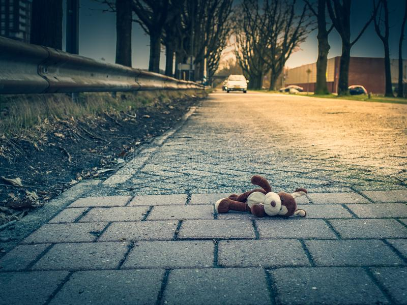 Soft toy dog, lie on the road. The concept of child safety on the street, improving safety. Soft toy dog lies on the road close-up view, the car royalty free stock photo
