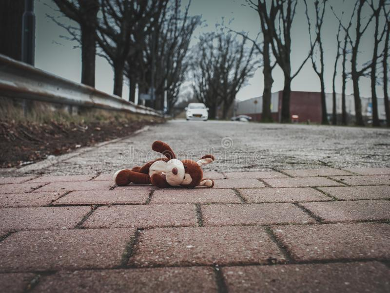 Soft toy dog, lie on the road. The concept of child safety on the street, play outside and traffic. Soft toy dog lies on the road close-up view royalty free stock images