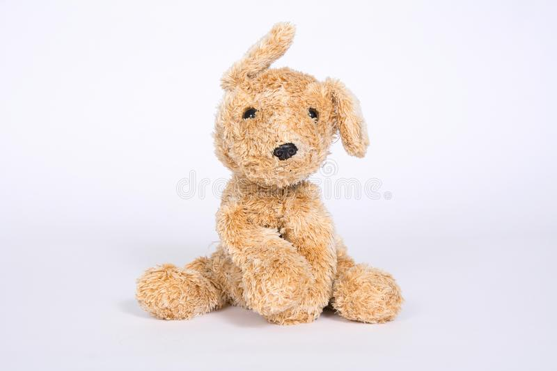 Soft toy dog with raised ears isolated on white background.  stock images