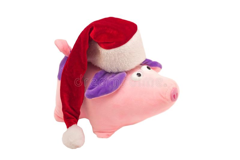 Soft toy New Year`s pig in a red Santa Claus hat on a white background, isolate, close-up, New Year of the Pig 2019, Christmas stock photos