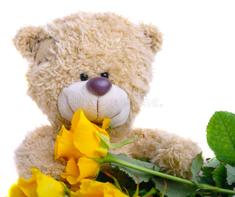 Soft toy teddy bear with a bouquet of yellow roses stock photos