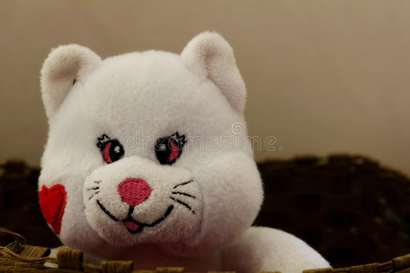 Soft toys - Bear. Lovely white bear in a basket royalty free stock images