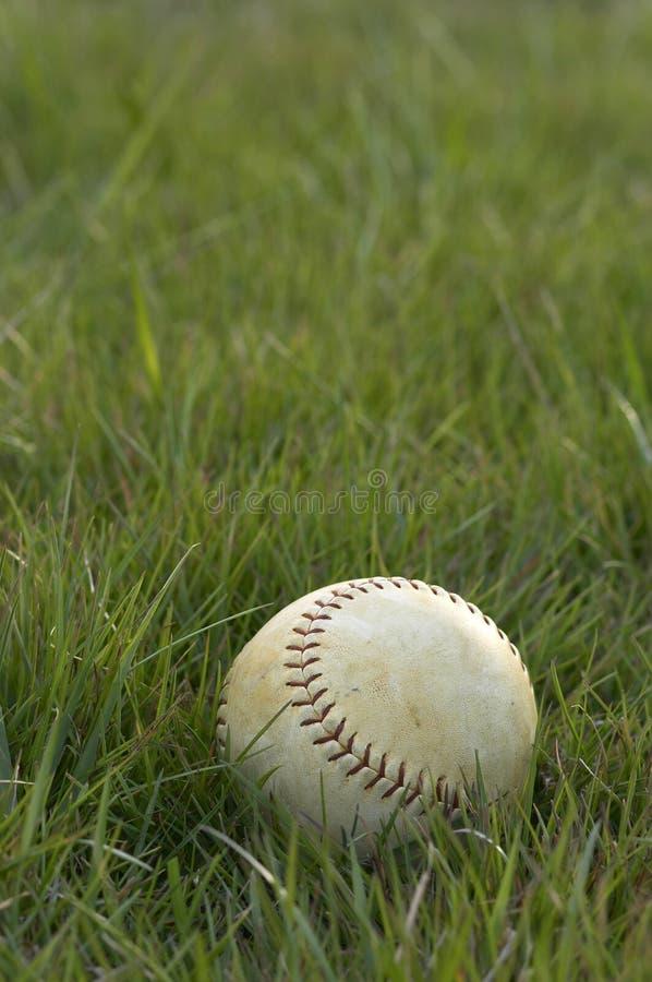 Softball royalty-vrije stock foto's