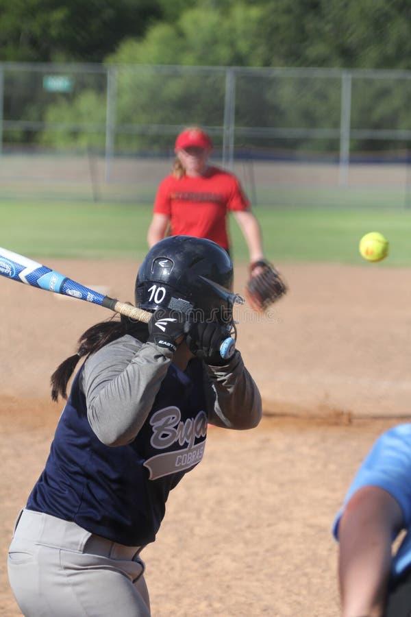 softball photos stock