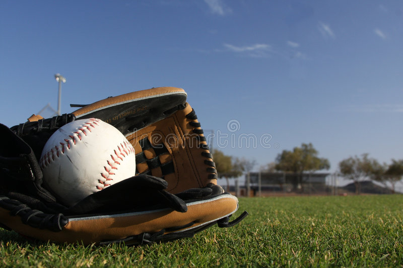 Softball with gloves stock photo