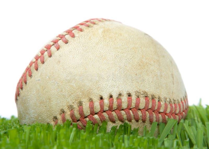 Softball nella fine dell'erba in su fotografia stock