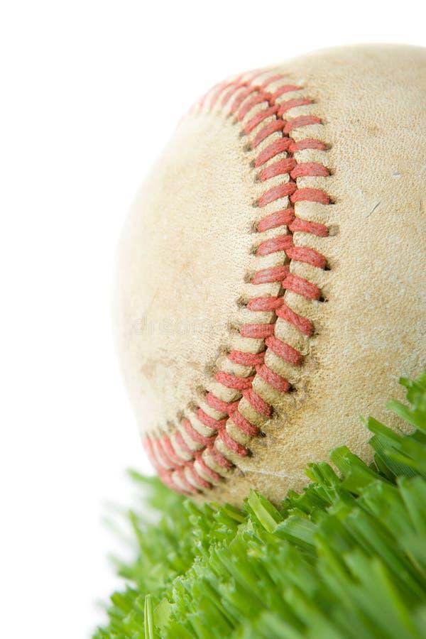 Softball nella fine dell'erba in su immagini stock
