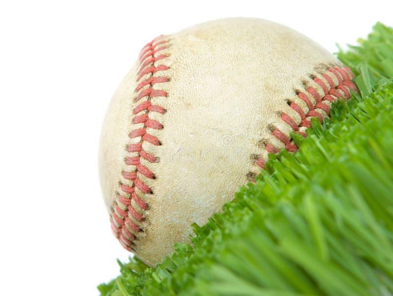 Softball nella fine dell'erba in su fotografia stock libera da diritti