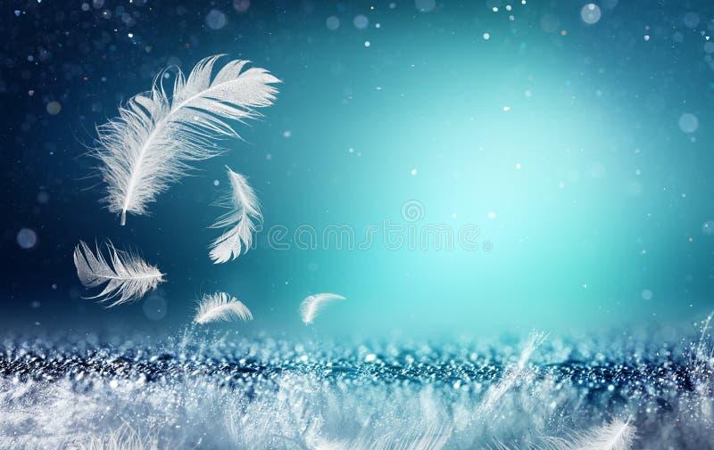 Softness- och friskhetbegrepp - fjädrar royaltyfria foton