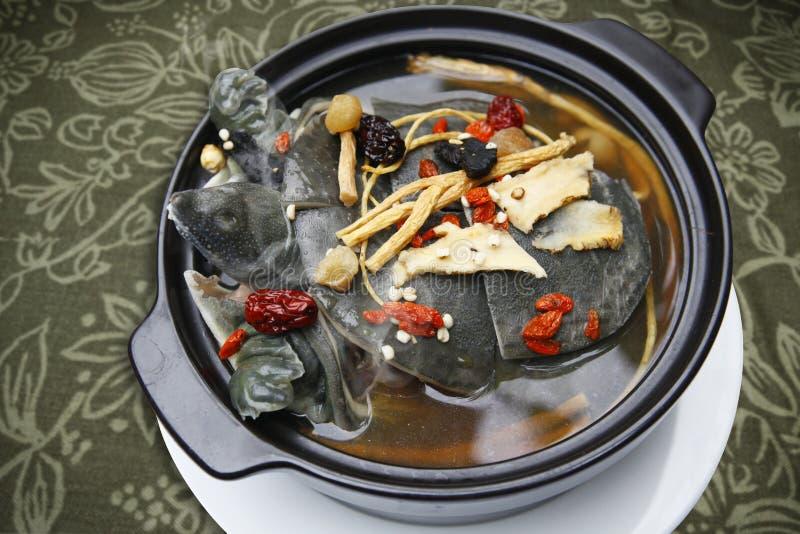 Softshells stufati della tartaruga con la droga di erbe immagine stock