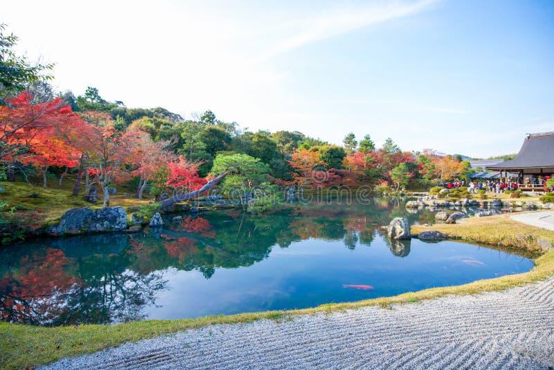 Sogenchi pond garden in autumn season at Tenryuji temple royalty free stock photography