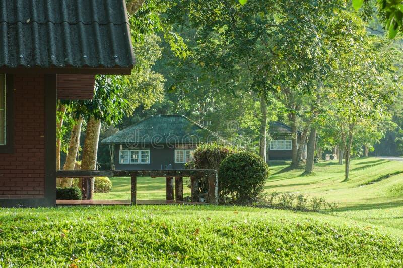 Soggiorno domestico nel parco nazionale, Sukhothai, Tailandia immagine stock