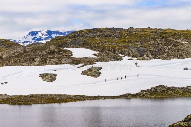 Sognefjellet越野滑雪,挪威 库存照片