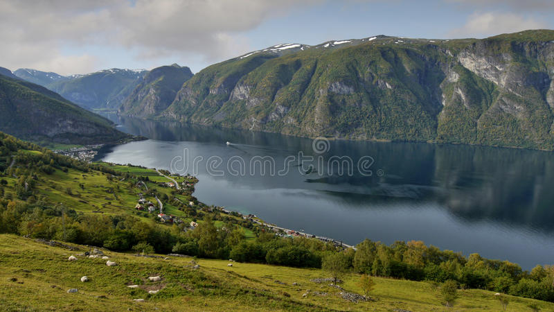 Download Sognefjord, Norway stock image. Image of hill, canyon - 60459259