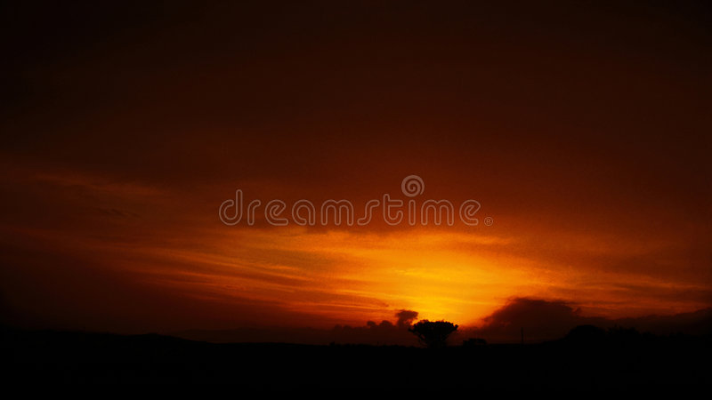 Sogno arancione V immagini stock