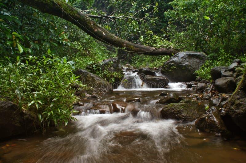 Sogno del fiume fotografia stock
