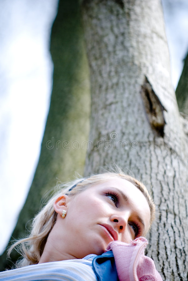 Sogno della foresta fotografia stock