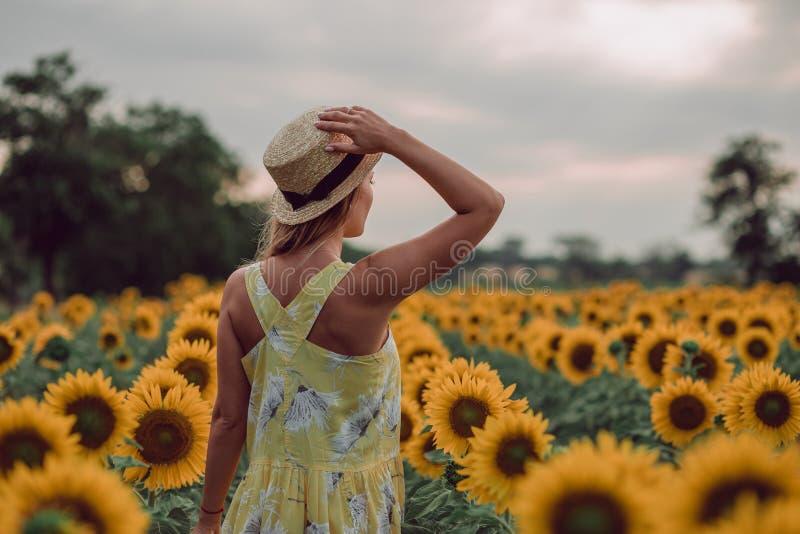 Sogno della giovane donna in vestito giallo che tiene un cappello con una mano e che si allontana in un campo dei girasoli all'es fotografia stock