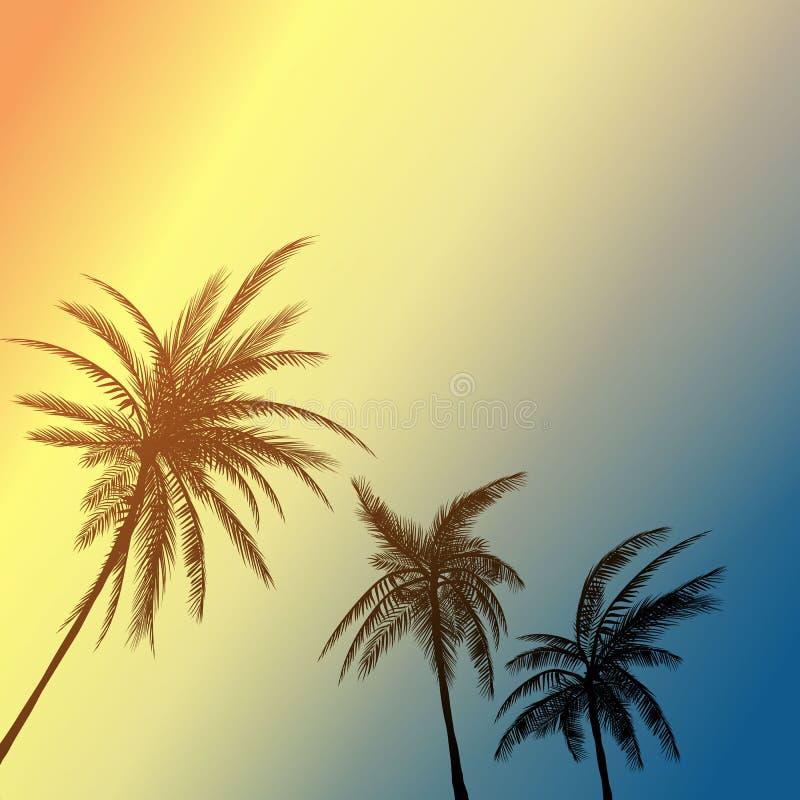 Sogno di California della palma di estate Priorità bassa di tramonto illustrazione di stock