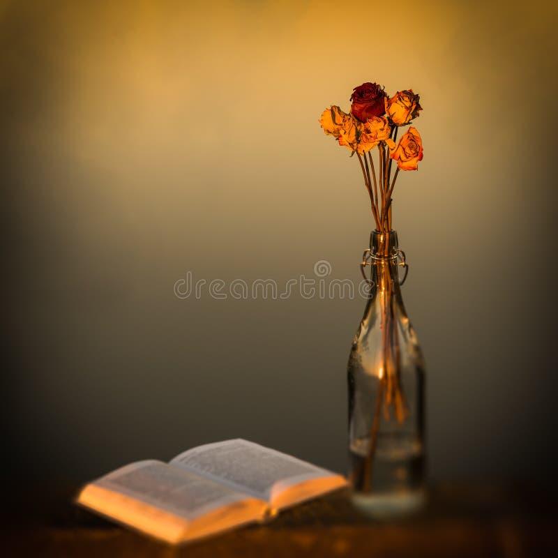 Sogno via fotografia stock libera da diritti