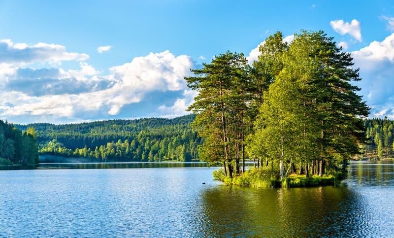 Sognsvann See nördlich von Oslo lizenzfreie stockfotos