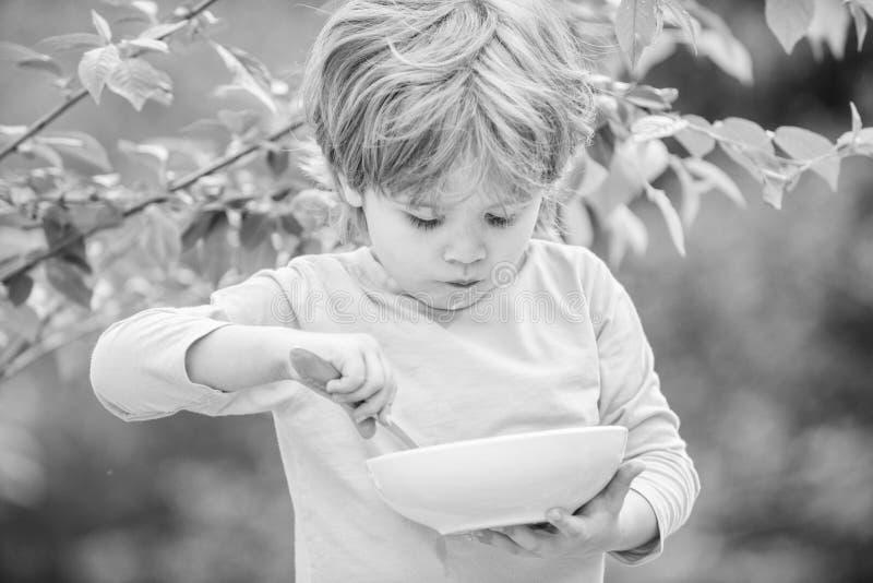Sohn und Essen des Milchbreis Getreide f?r guten Morgen des Fr?hst?cks Kleines Jungenessen im Freien Entwicklung des Kindes wenig stockfoto