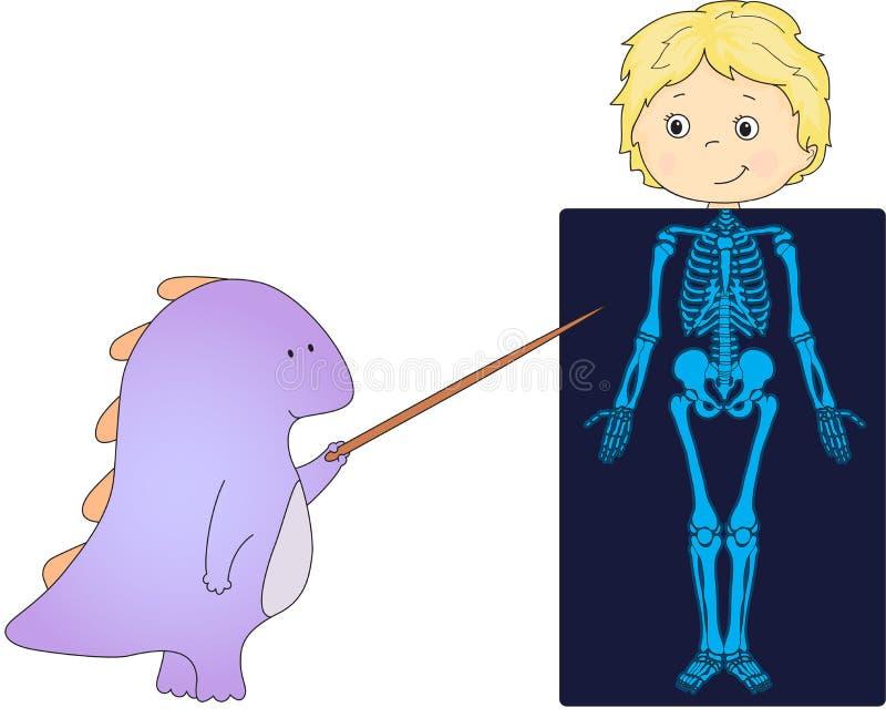 Soignez le dragon et le patient dont le corps est montré dans le rayon X Vect illustration de vecteur