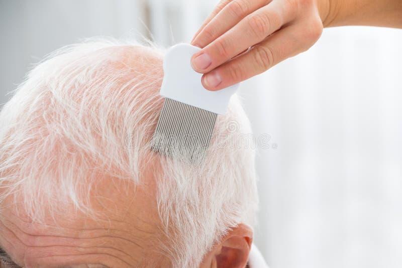 Soignez les cheveux patients du ` s de Doing Treatment On avec le peigne image libre de droits