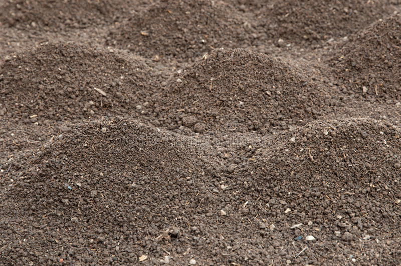 Download Soil stock photo. Image of agriculture, grained, angle - 24001646