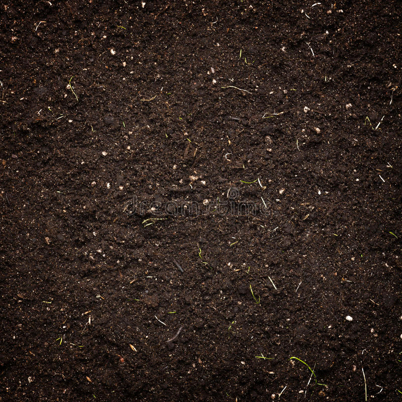 Soil. Background texture of the soil stock image