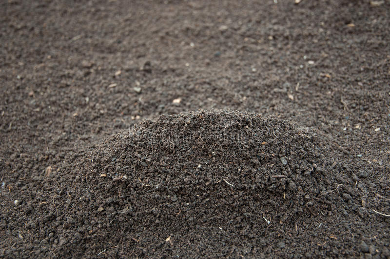 Download Soil stock photo. Image of directly, gravel, agriculture - 28561472