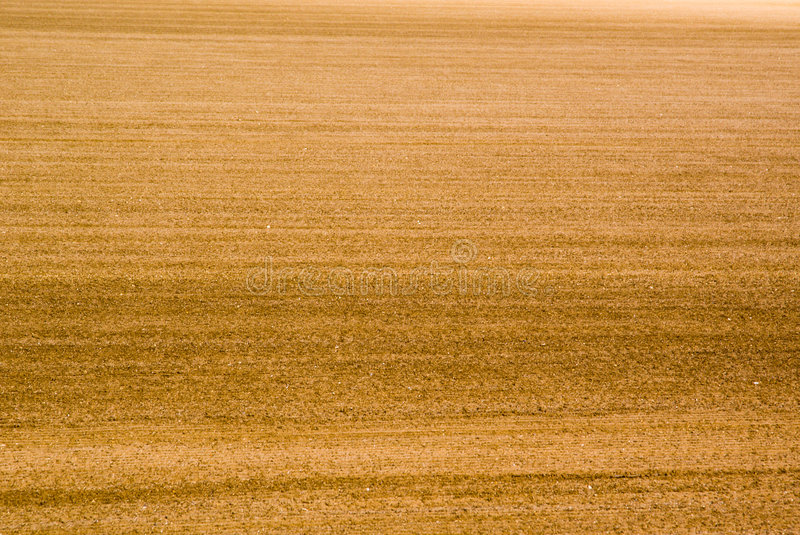 Soil backgorund royalty free stock images