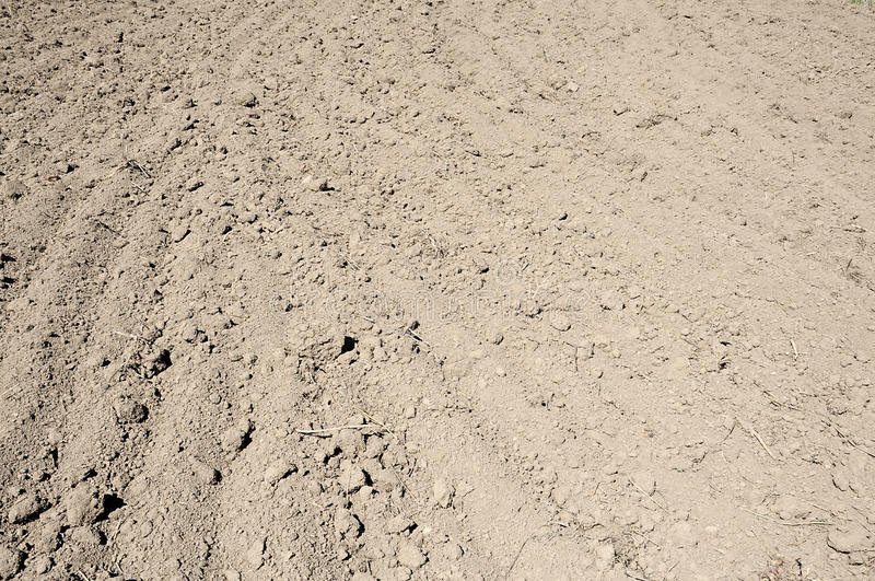 Soil background royalty free stock photography