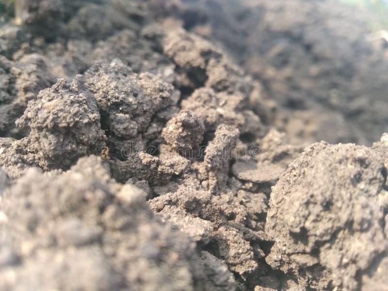 Soil. Black soil close photography royalty free stock image