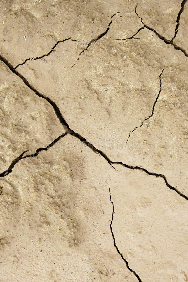 Soil cracked by a climatic disaster stock photo